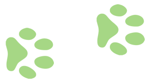 paws33.png